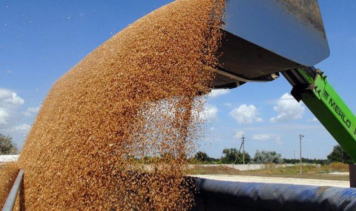 В 2017 году в России соберут рекордное количество зерна