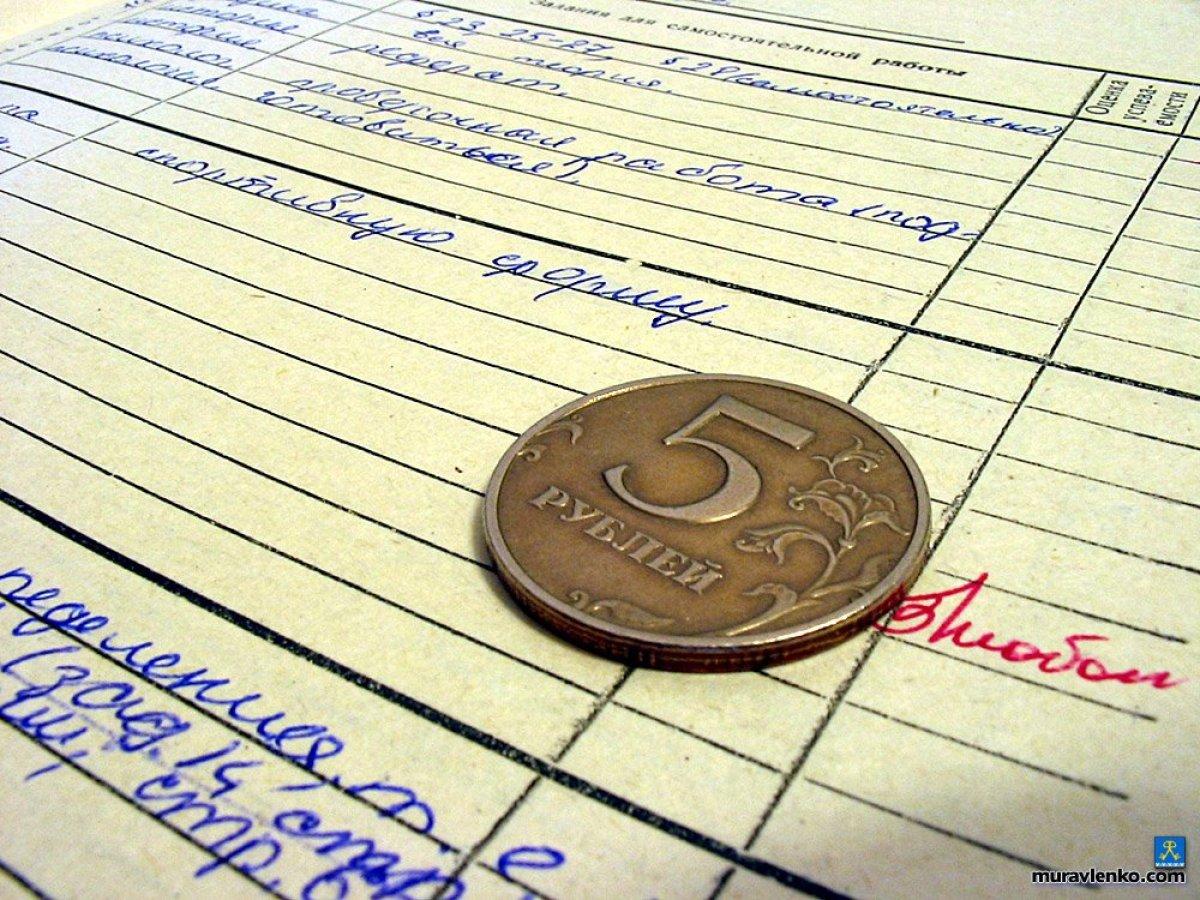 Предложения по улучшению оплаты труда молодых учителей появятся до 15 августа