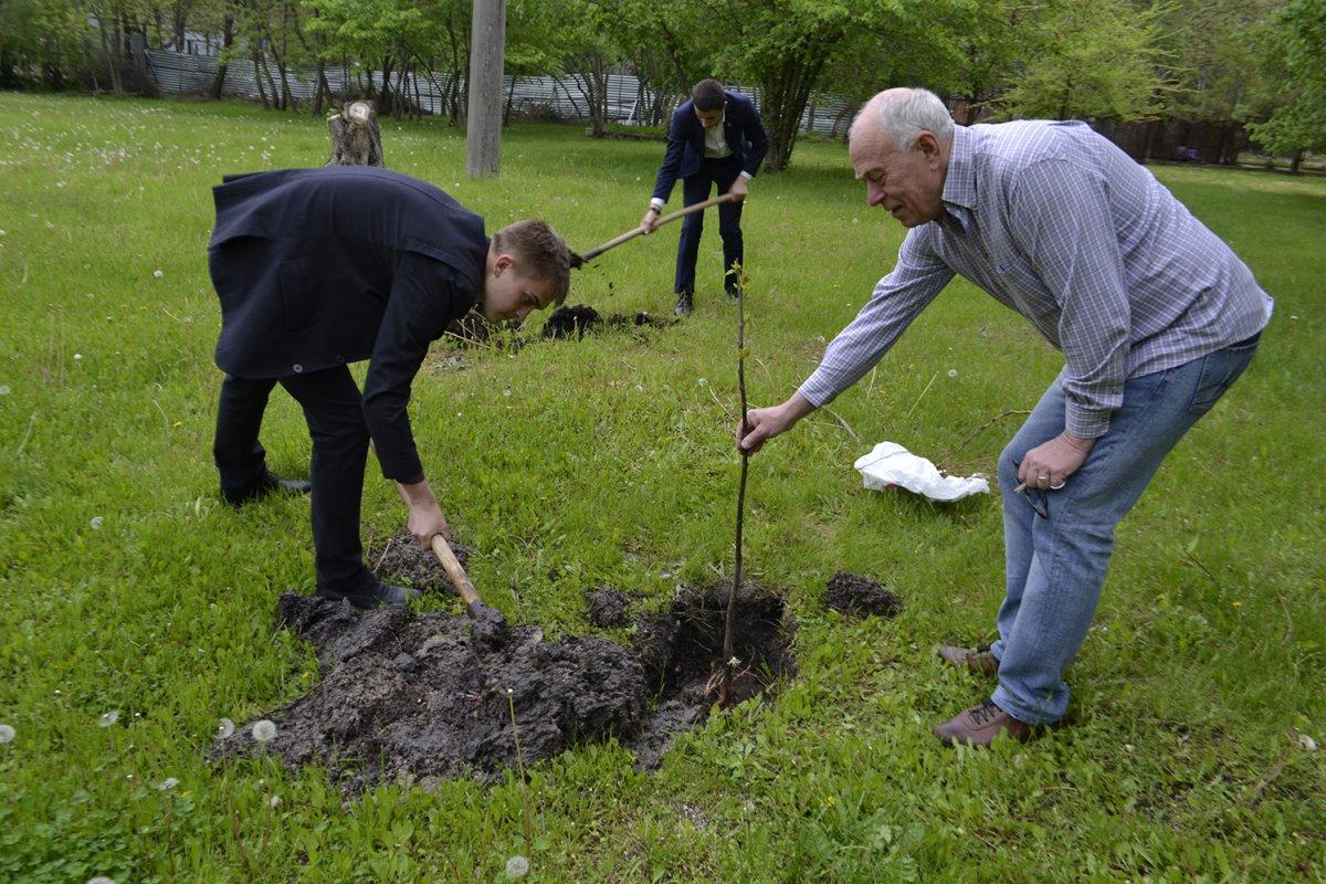 Привлечь студентов к благоустройству дворов предлагает Минстрой России