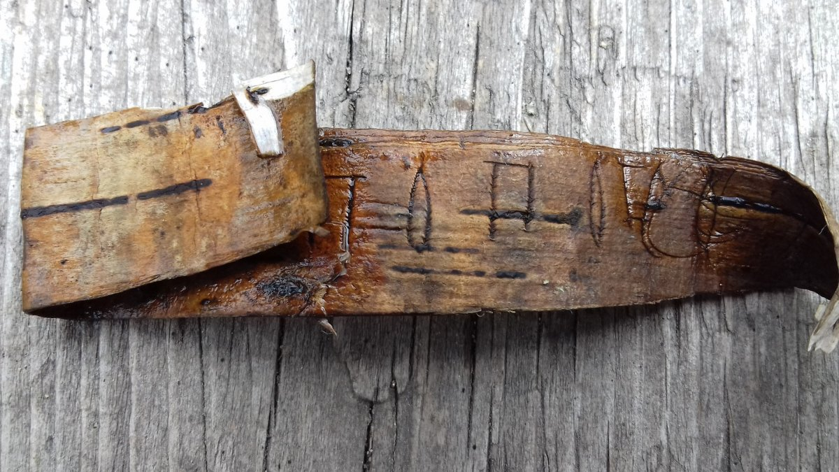 В Новгороде прочли найденную в этом году берестяную грамоту