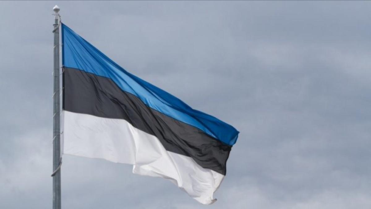 В Эстонии изъяли дочь у россиян из-за плохого ремонта в квартире