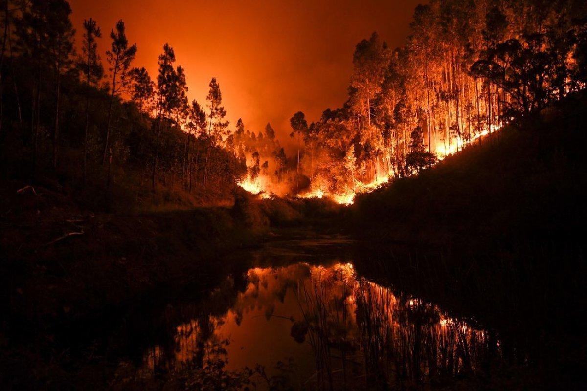 Пожары в Европе не пугают российских туристов