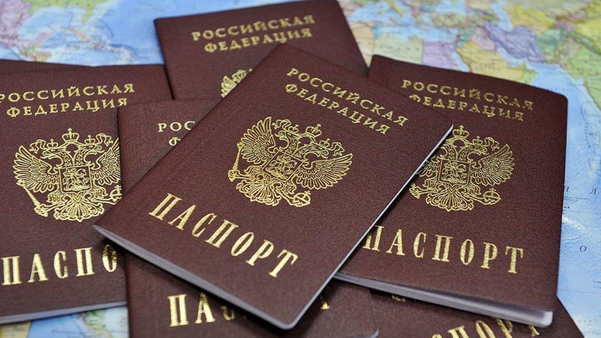 Депутаты упростили процедуру принятия гражданства России для украинцев