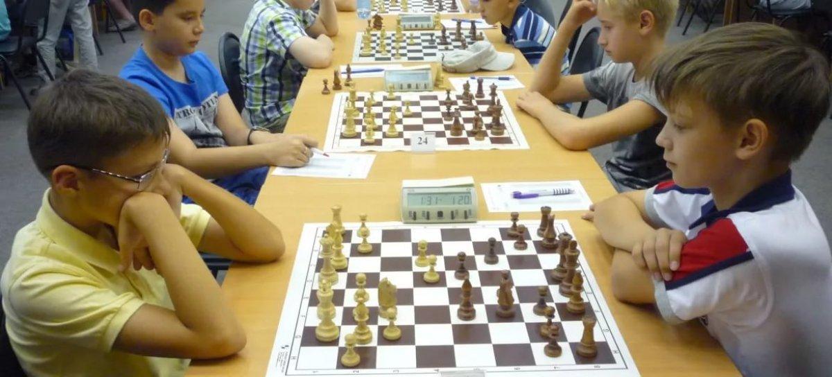 Поступило предложение ввести уроки по шахматам в школьную программу