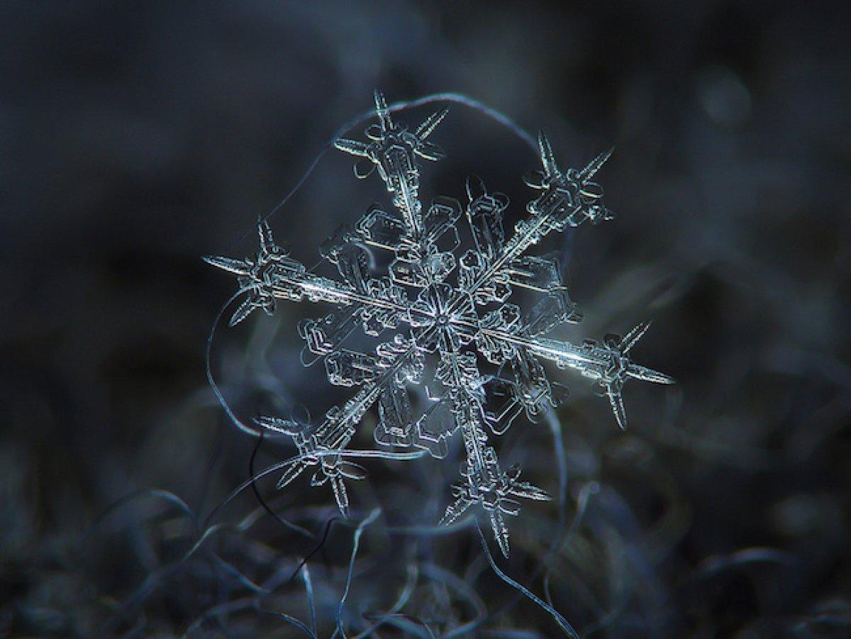Обнаружен новый тип снежинки