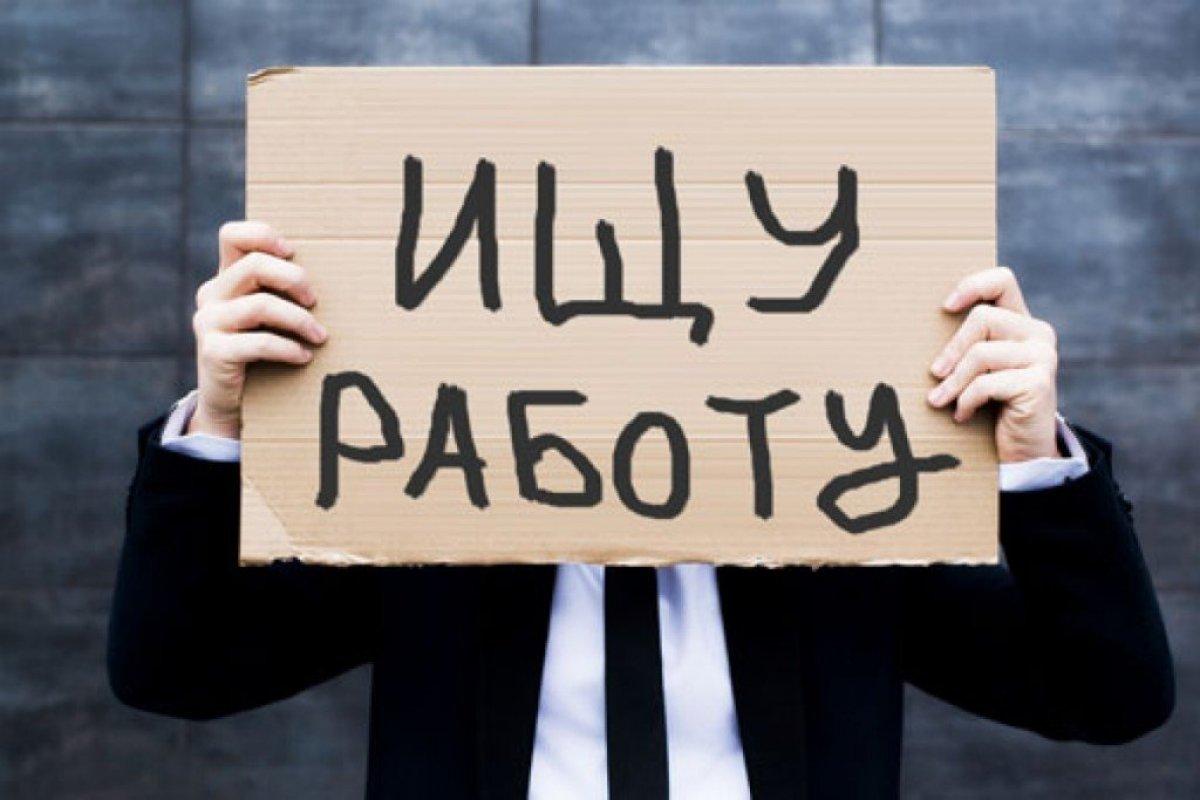 Российские ВУЗы обвинили в переизбытке экономистов и юристов