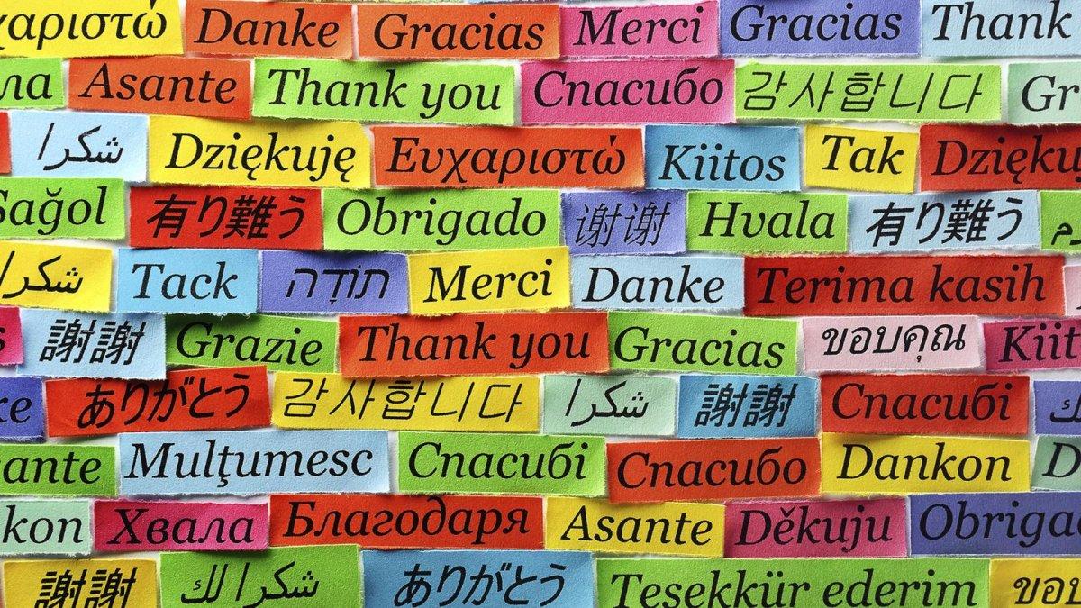 Сегодня отмечают Международный день родного языка!