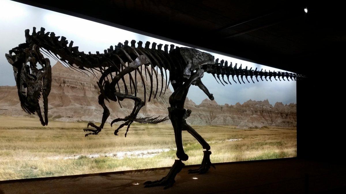 Ученые озвучили еще одну версию гибели динозавров