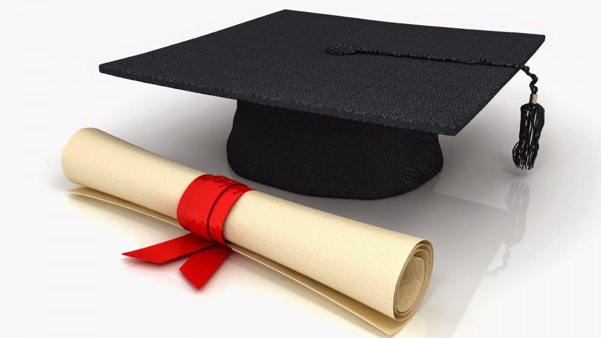 Правительство запретит рекламу курсовых и дипломов на заказ