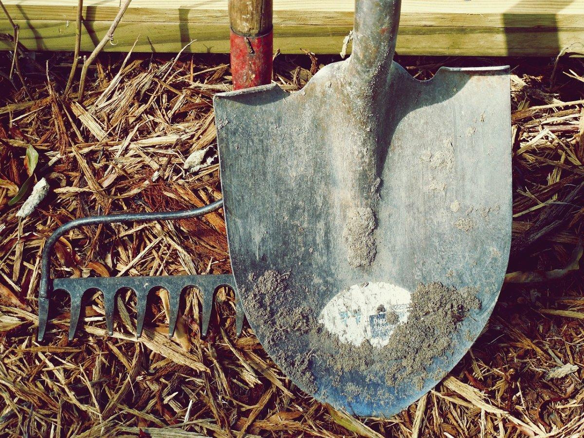 Одиннадцатиклассников на ЕГЭ смутила лопата