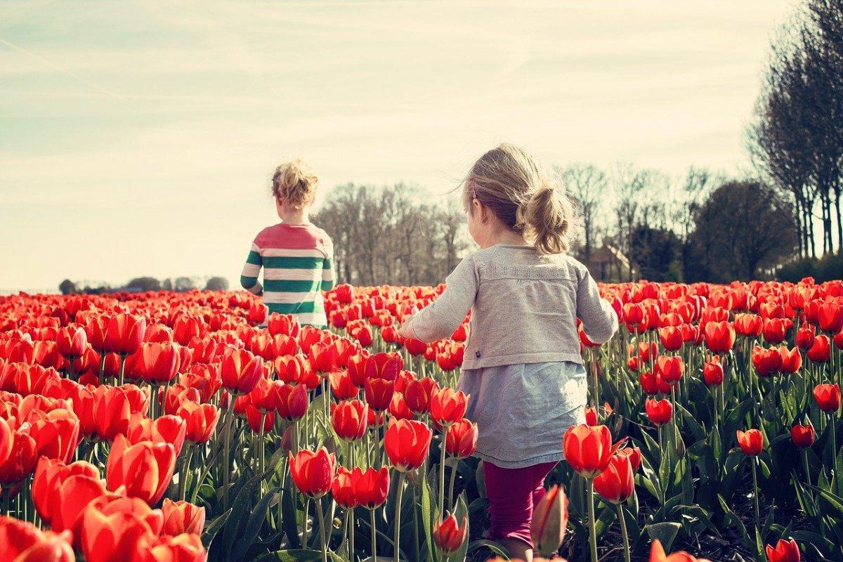 Кузнецова: количество детей с редкими заболеваниями растёт