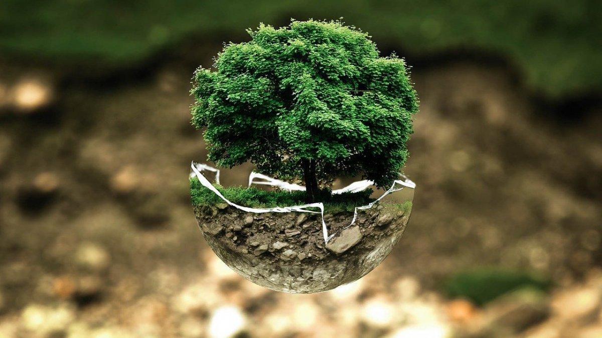 Прием заявок на конкурс эко-проектов ecoINNOVATOR MENDELEEV продолжается