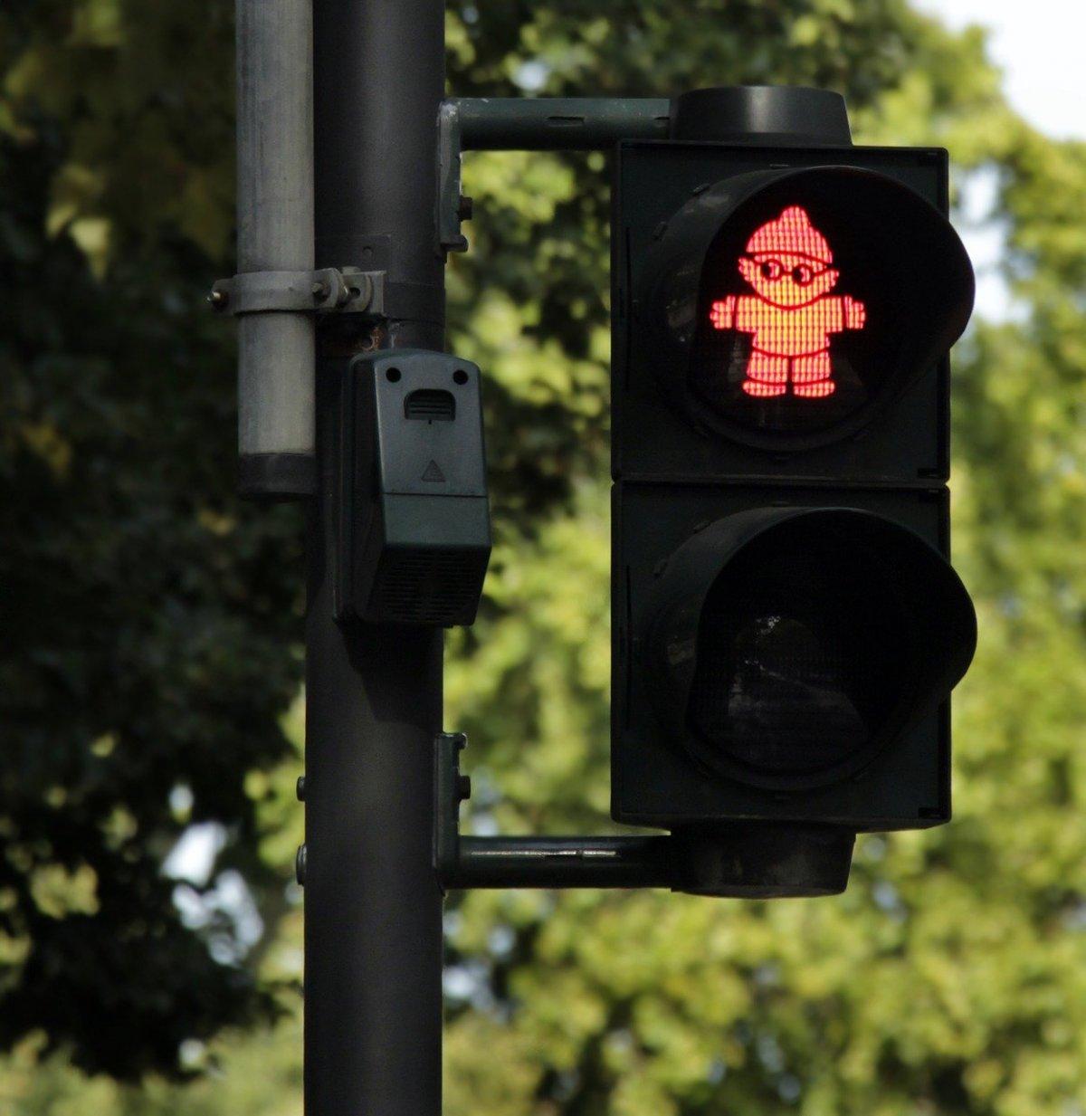 Правила дорожного движения хотят включить в ЕГЭ