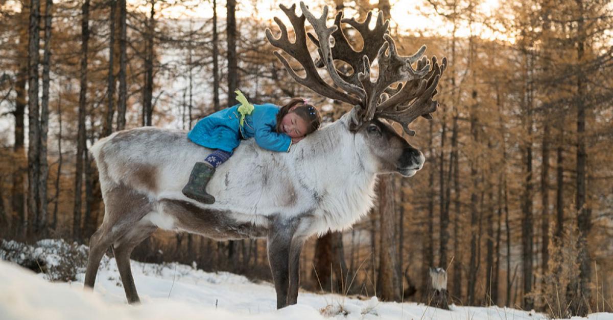 В Якутии откроются кочевые детские сады
