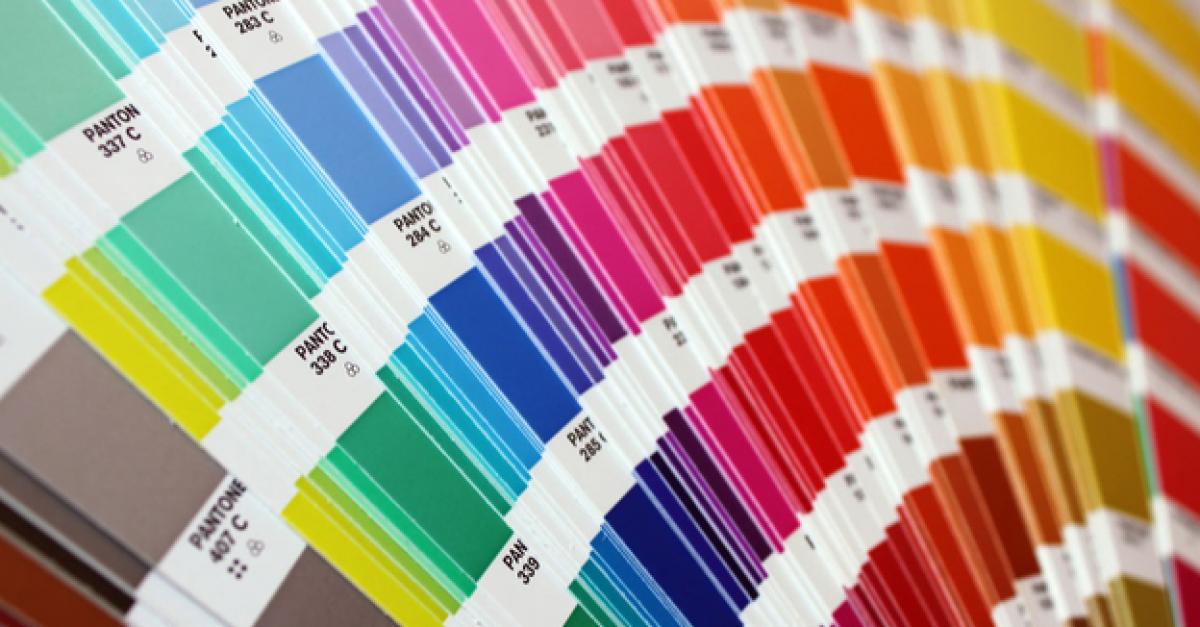 Австралийские ученые определили самый неприятный цвет