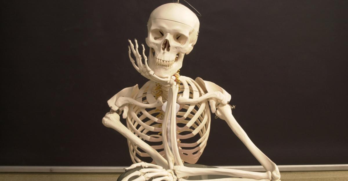 Отечественные учёные изобрели «самовосстанавливающиеся» импланты