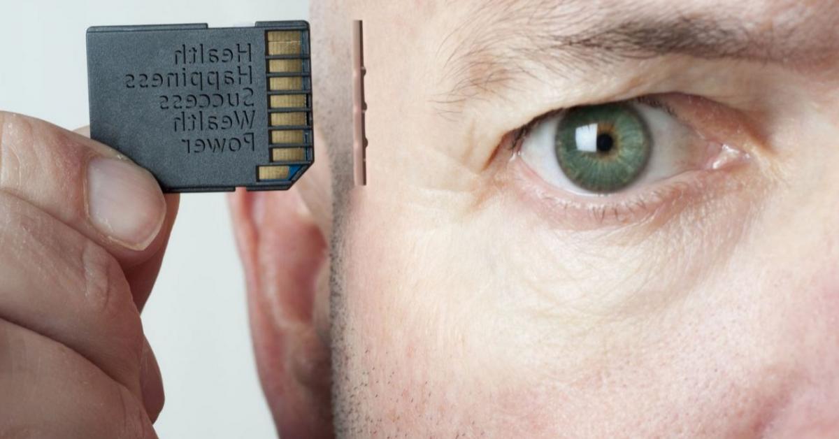 Учёные смогли осуществить «пересадку памяти»