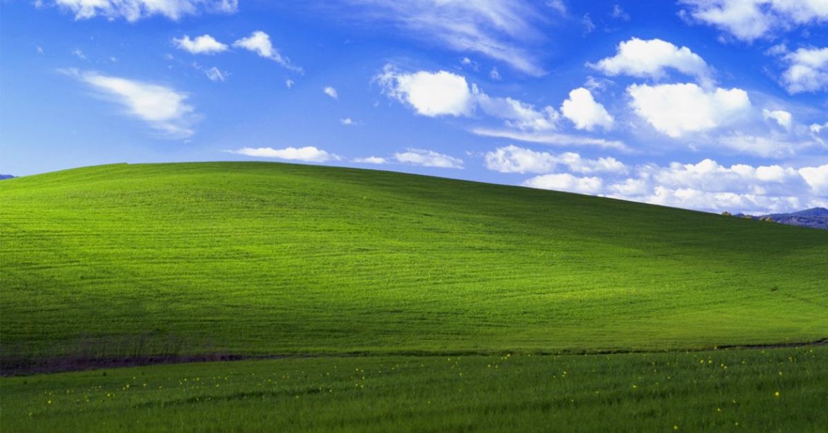 Microsoft и National Geographic проспонсируют решение экологических проблем