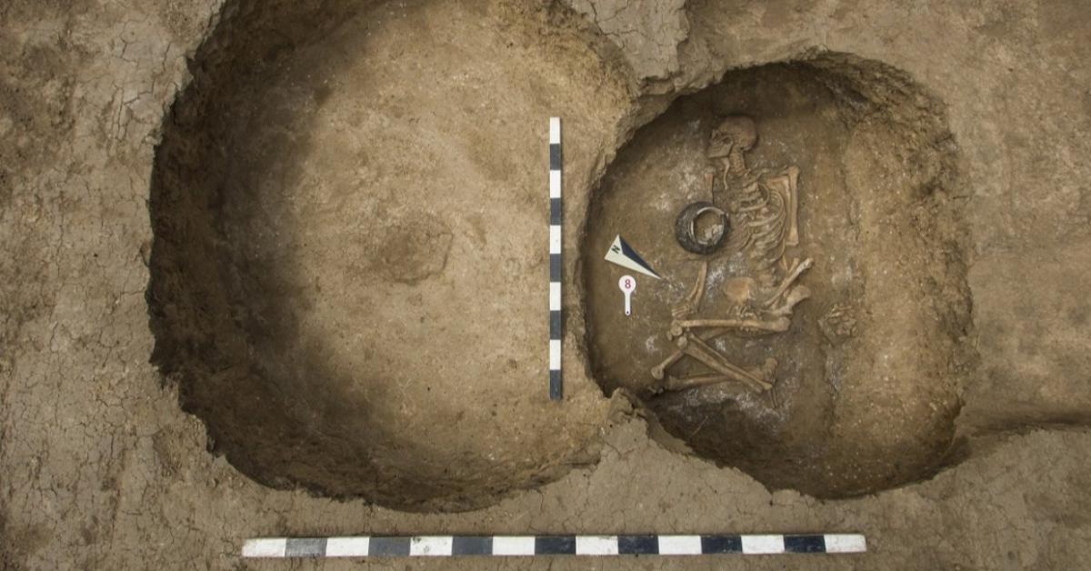 Старше пирамиды Хеопса: в Ростовской области нашли захоронение древних