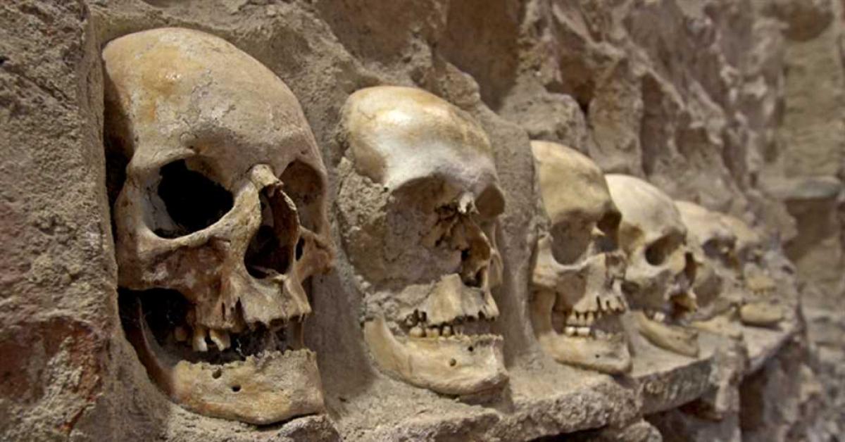 Археологи ЮФУ обнаружили древнейшее захоронение на Дону