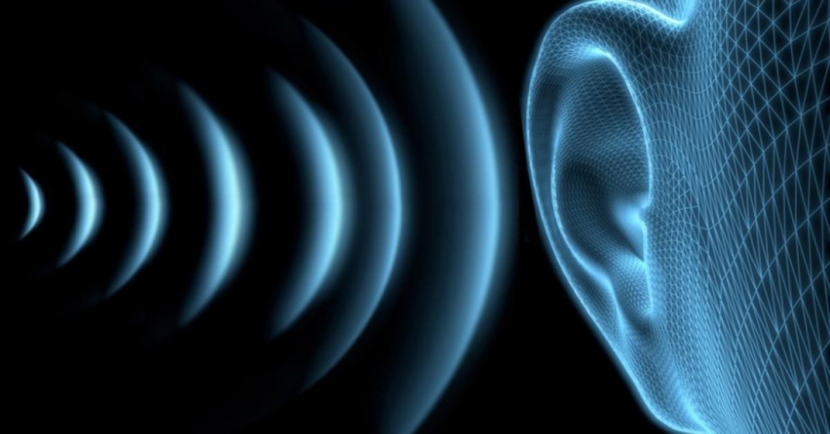 Ученые из 12 стран обсудили способы снижения шума и вибрации
