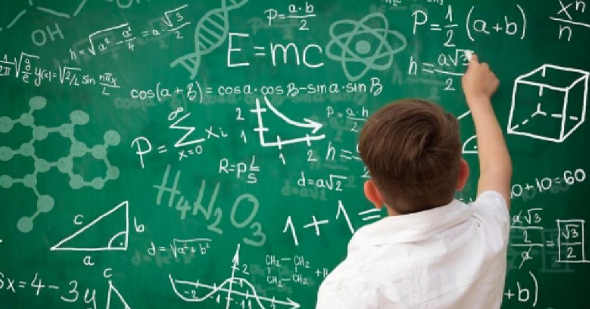 Математика раздора: о чем Ольга Васильева поспорила с Германом Грефом?