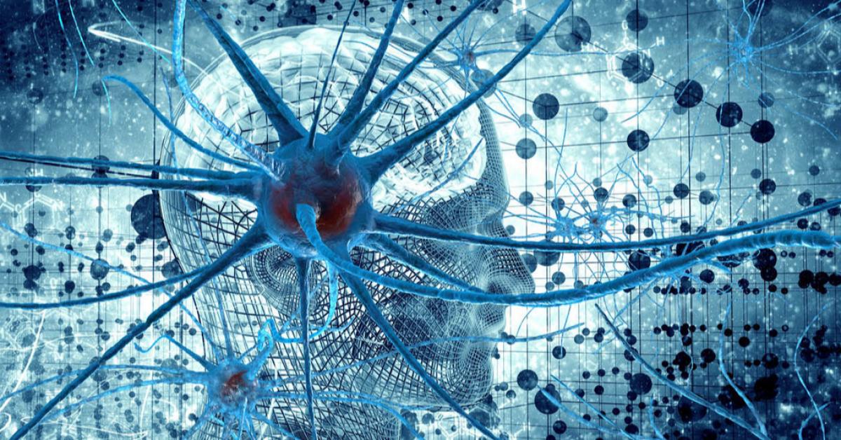 Машинное обучение в когнитивных нейронауках