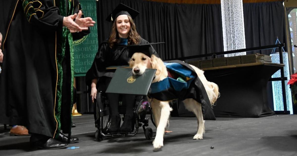 В США пёс получил диплом о высшем образовании