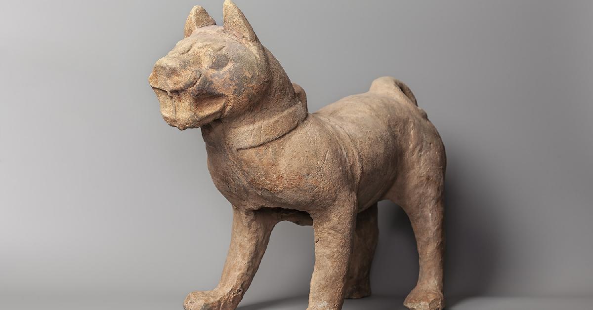 Испанцы веками приносили в жертву собак