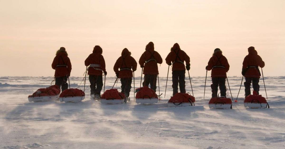 Московских школьников зовут в экспедицию в Арктику