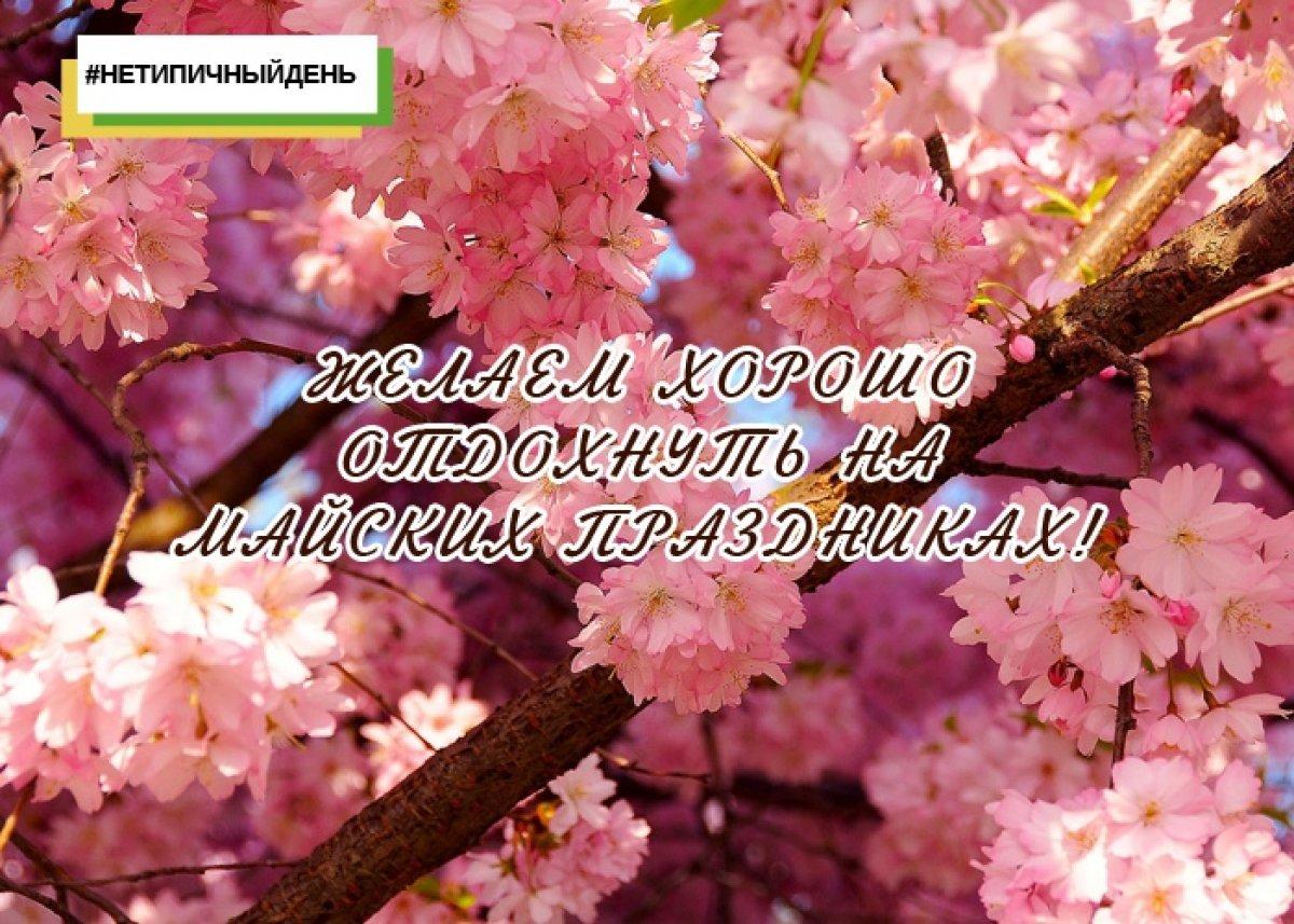 Ураааа! Всем мир, труд, май!!! И ярких майских праздников и выходных!😃😎💛