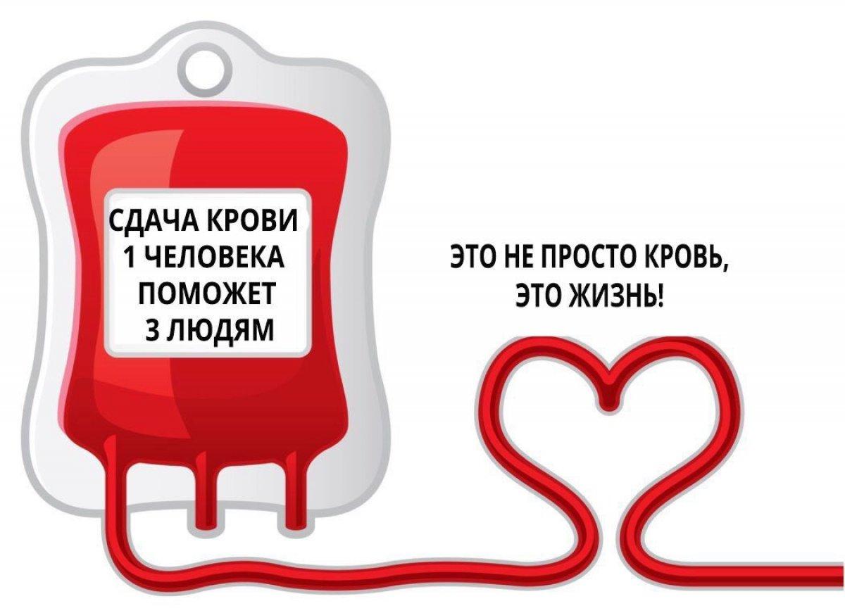 Чем вы можете помочь? Сдавайте кровь!