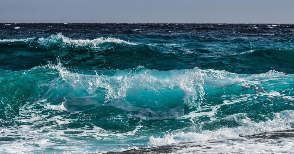 РАН приглашает в магистратуру по физике океана