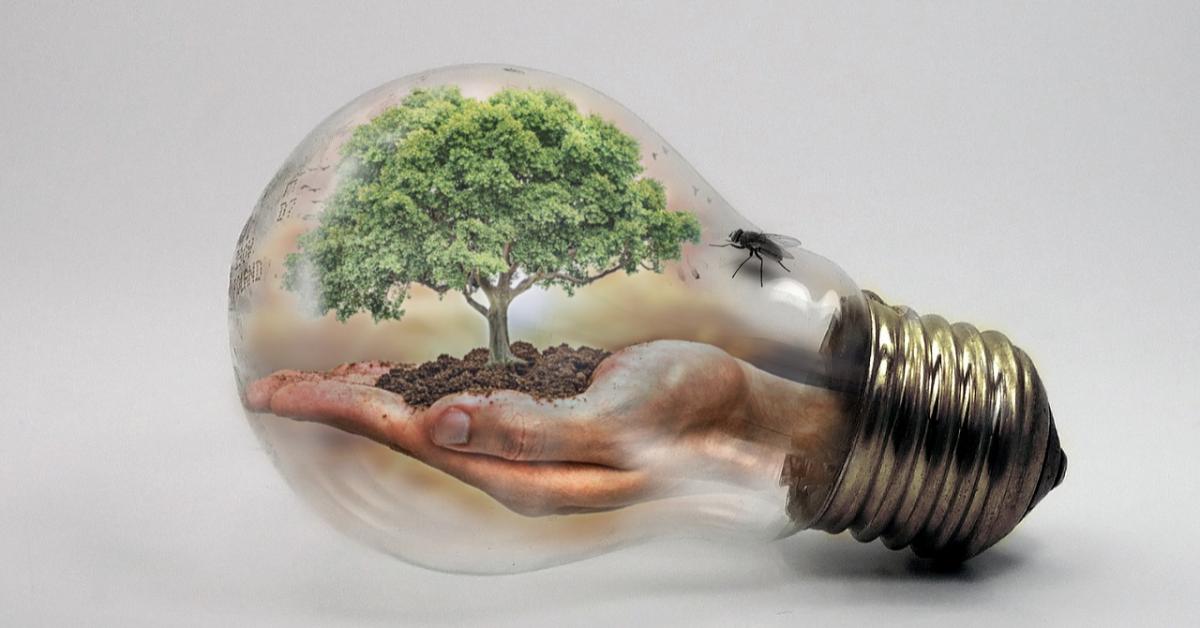 В центр школьного образования в Италии поставят экологию