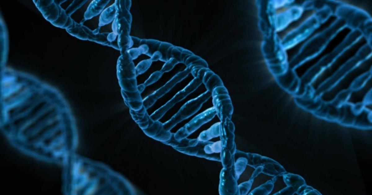 Роберт Сапольски о том, как гены влияют на выбор профессии