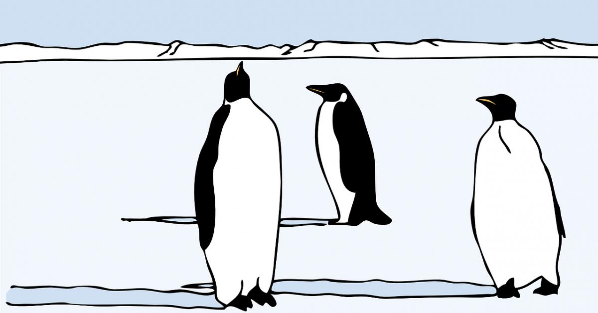В РУТ школьники смогут совершить виртуальное путешествие в Антарктиду