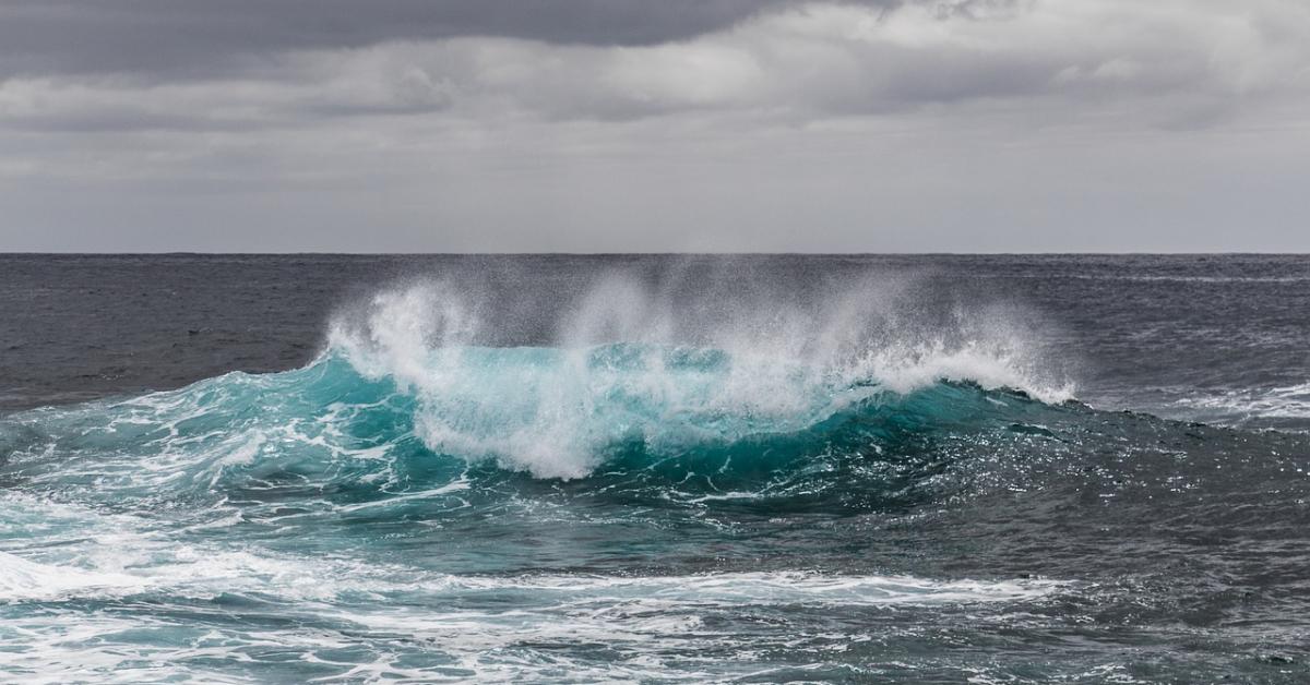 Приёмная кампания-2021: второй волны зачисления не будет