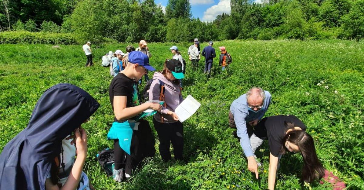 Школьники нашли в лесах редкое растение
